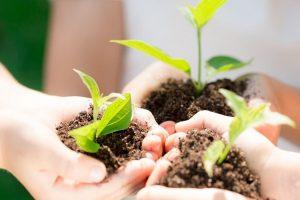 デジャルダン(カナダ)が持続可能な開発への取り組みを続ける